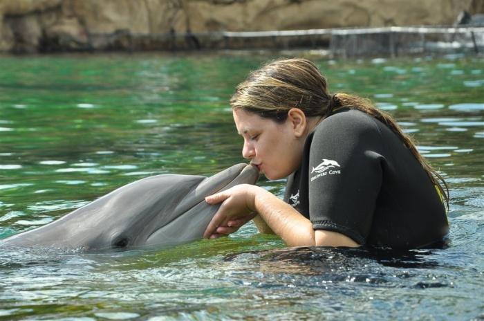 A essência do parque é a interação com os golfinhos