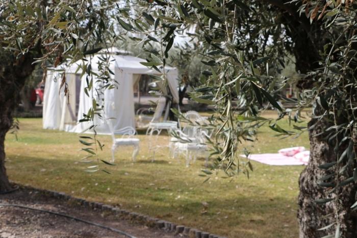 Mendoza (10)