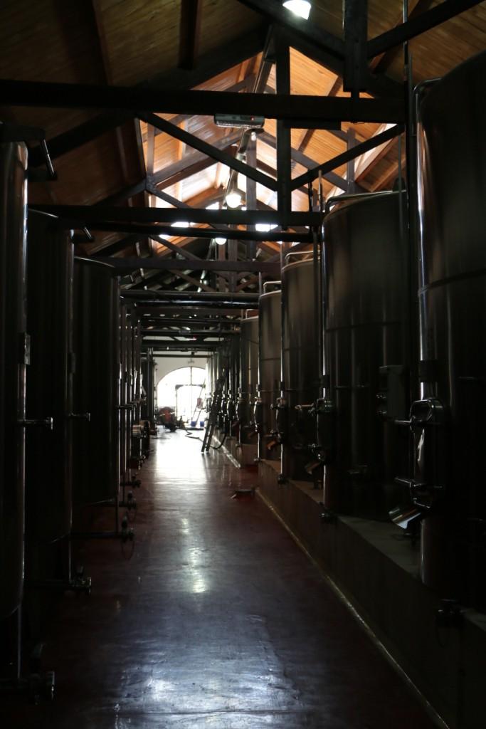 Visita ao local no qual o vinho é armazenado na Lugi Bosca