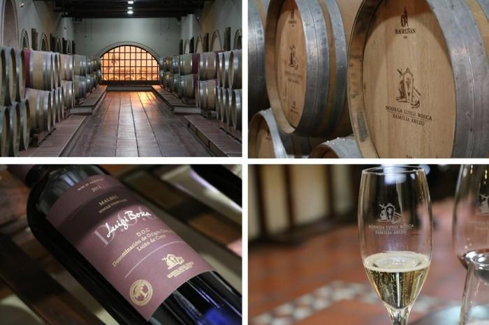 Produção de vinhos na Luigi Bosca