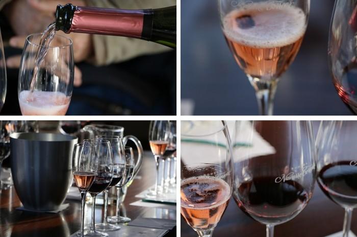 Degustação de três vinhos na Navarro Correas